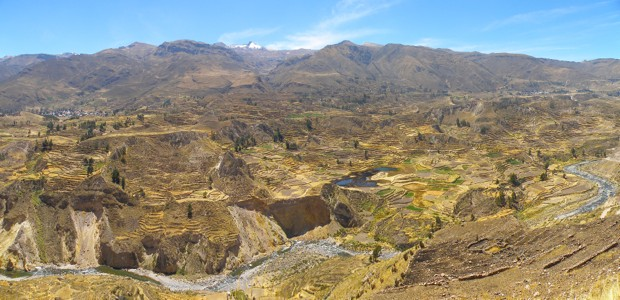 Terraces near Colca Canyon